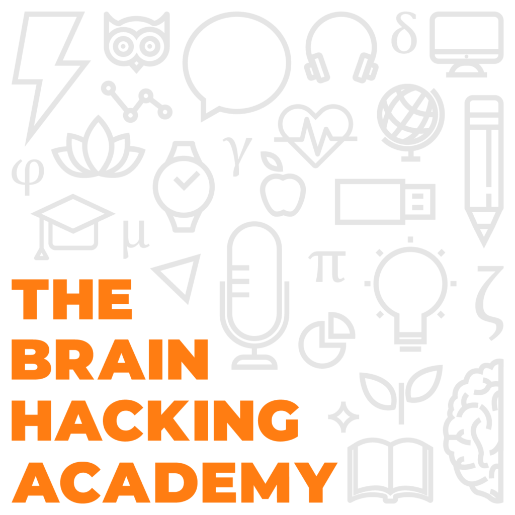 The logo of the Brain Hacking Academy, a collection of icons forming a square. The bottom left corner of the square reads 'The Brain Hacking Academy'.