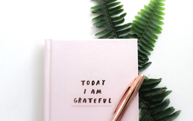 Σε αυτό το επεισόδιο συζητάμε το γιατί η ευγνωμοσύνη είναι τόσο σημαντική για την ευτυχία μας και τους τρόπους που θα σε βοηθήσουν να τη βάλεις στη ζωή σου.